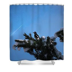 Wish Upon A Shooting Star Shower Curtain