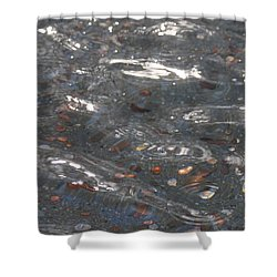 Wishes Shower Curtain by Lauri Novak
