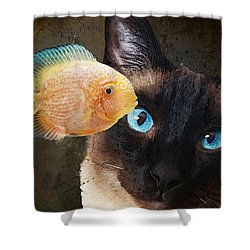 Shower Curtain featuring the painting Wishful Thinking 2 - Siamese Cat Art - Sharon Cummings by Sharon Cummings