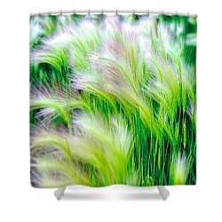 Wispy Green Shower Curtain