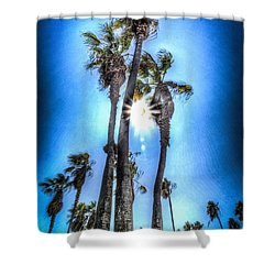 Shower Curtain featuring the photograph Wispy Palms by T Brian Jones