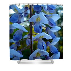 Wisteria - Blue Hooded Ladies Shower Curtain