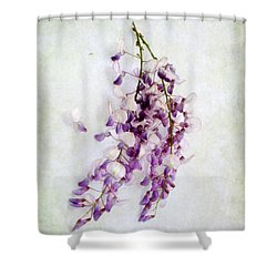 Shower Curtain featuring the photograph Wisteria Still Life by Louise Kumpf