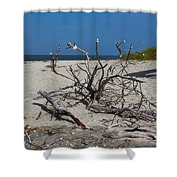 Shower Curtain featuring the photograph Wistful But Unwavering by Michiale Schneider