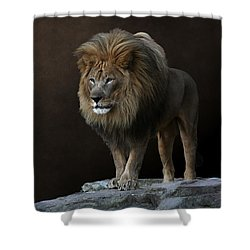 With Age Comes Wisdom Shower Curtain