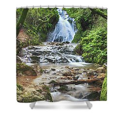 With All I Have Shower Curtain by Laurie Search