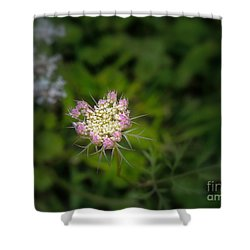 Shower Curtain featuring the photograph With All My Heart... by Brenda Bostic