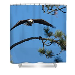 With Catch Shower Curtain