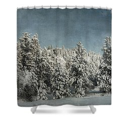 With Love - Winter  Shower Curtain by Beve Brown-Clark Photography