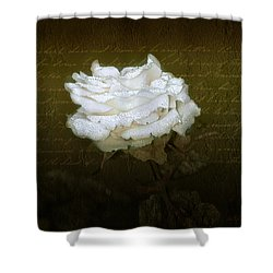With Love Shower Curtain by Holly Kempe
