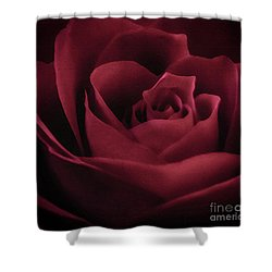 With This Rose Shower Curtain