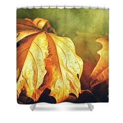 Shower Curtain featuring the photograph Withered Leaves by Silvia Ganora