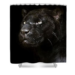 Shower Curtain featuring the photograph Within by Cheri McEachin