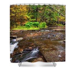 Wolf Creek 2 Shower Curtain by Mark Papke