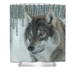 Wolf In Aspens Shower Curtain