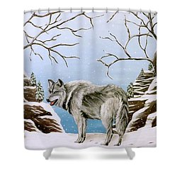 Wolf In Winter Shower Curtain by Teresa Wing