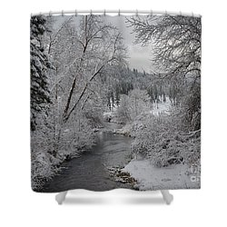 Wolf Lodge Creek Winter Shower Curtain