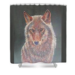 Wolf Portrait Shower Curtain