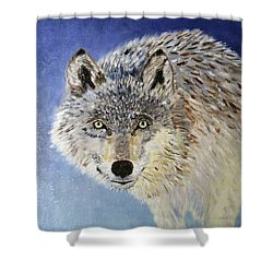 Wolf Study Shower Curtain