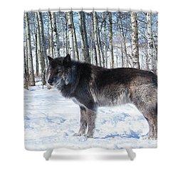 Wolfdog Shower Curtain