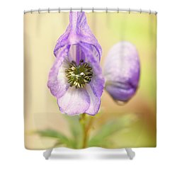 Shower Curtain featuring the photograph Wolf's Bane Flower With Pistils by Nick Biemans