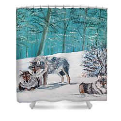 Wolves In The Wild Shower Curtain