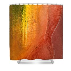 Shower Curtain featuring the digital art Woman In Window Light by Haleh Mahbod