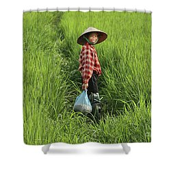 Woman Smile Rice Fields Shower Curtain