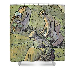 Women Gathering Mushrooms Shower Curtain by Camille Pissarro