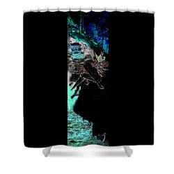 Women Rose Shower Curtain