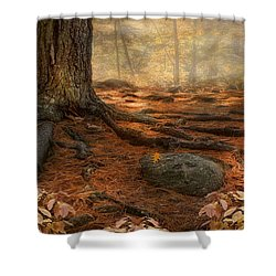 Shower Curtain featuring the photograph Wonder Always by Robin-Lee Vieira