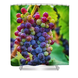 Shower Curtain featuring the photograph Wonderful Colors by Lynn Hopwood