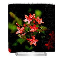 Wonderful Colors Shower Curtain