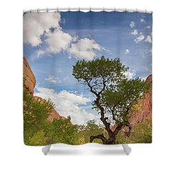 Wonderful Tonight Shower Curtain