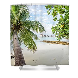 Shower Curtain featuring the photograph Wonderful View by Hannes Cmarits