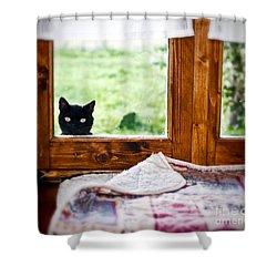 Wondering What's She... Better Investigate Shower Curtain by Silvia Ganora