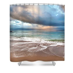 Wonderland Shower Curtain by David Millenheft