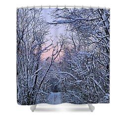 Wonderland Road Shower Curtain