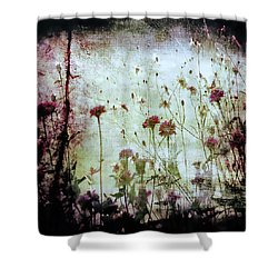 Wonderland Shower Curtain by Trish Mistric