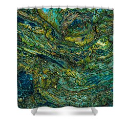 Wood Burl Abstract Shower Curtain