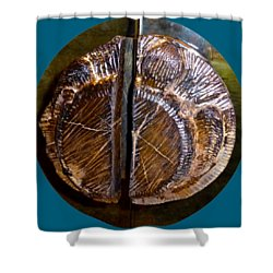 Shower Curtain featuring the photograph Wood Carved Fossil by Francesca Mackenney
