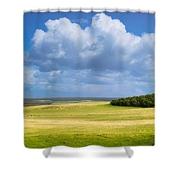 Wood Copse On A Hill Shower Curtain