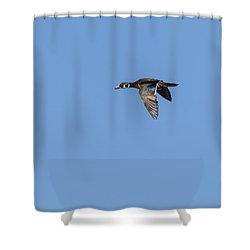 Shower Curtain featuring the photograph Wood Duck 2017-1 by Thomas Young