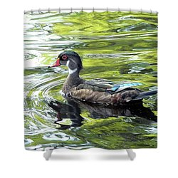 Wood Duck Shower Curtain by Al Powell Photography USA