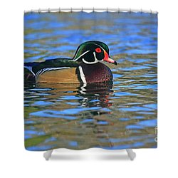 Wood Duck Colors 24x36 Print Shower Curtain