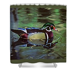 Shower Curtain featuring the photograph Wood Duck by Marie Hicks