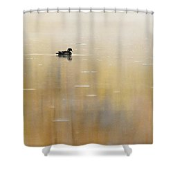 Shower Curtain featuring the photograph Wood Duck On Golden Pond by Larry Ricker