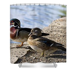 Wood Duck Pair By The Lake Shower Curtain by David Gn