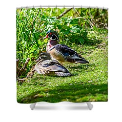 Shower Curtain featuring the photograph Wood Duck Pair by Jerry Cahill