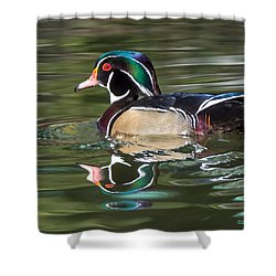 Shower Curtain featuring the photograph Wood Duck Reflections At Sterne Park by Stephen  Johnson